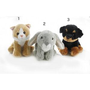 Rottweiler, kanin, kat