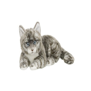 Amerikansk korthåret kat 25cm