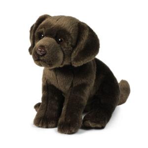 Labrador 26cm
